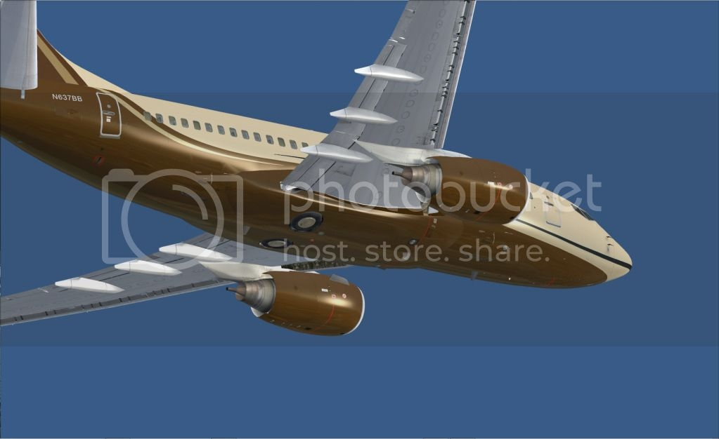 BBJ-600_BrownTest-2.jpg