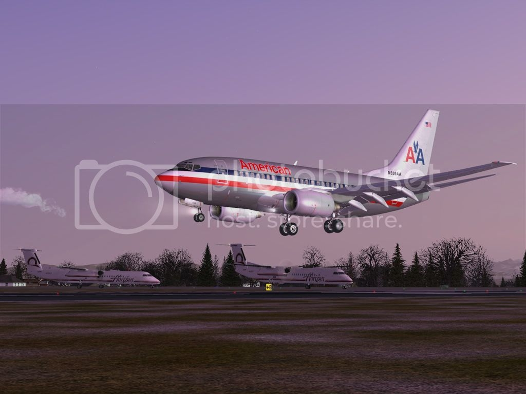 PMDG_737-600_NGX_American-4.jpg