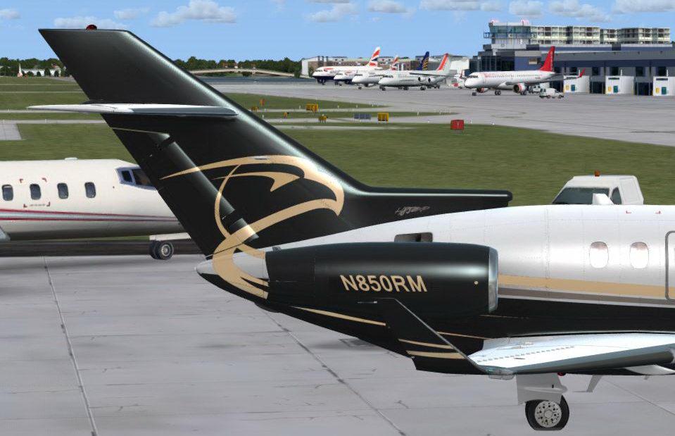 Hawker Gold_tail.JPG