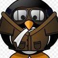soaring_penguin