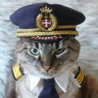 Captain Bilek