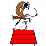 Snoopyace